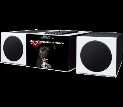 registrazione voce e mastering audio ep singoli Dario Giovannetti
